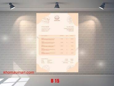 Mẫu sưu tập hóa đơn – B 15