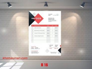 Mẫu sưu tập hóa đơn – B 16