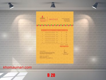 Mẫu sưu tập hóa đơn – B 20